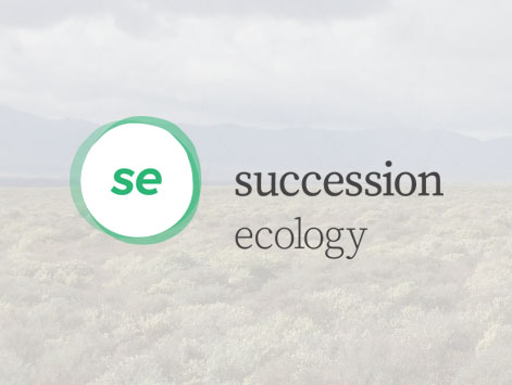 Website created for Succession Ecology